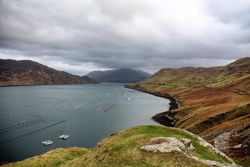 Photo of Killary Harbour