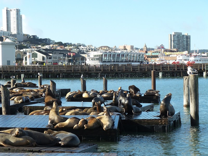 Photo of Pier 39 in Fisherman's Wharf