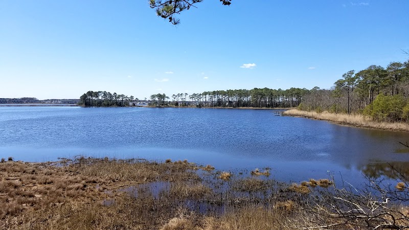 Photo of Assawoman Wildlife Area