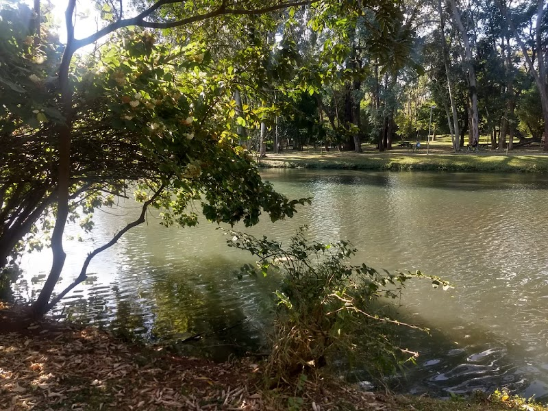 Photo of Parque Ibirapuera